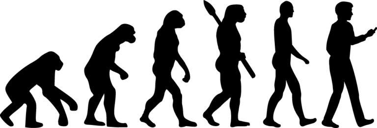 Evolution-768x261