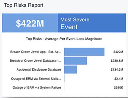 RiskLens Pro Managed Service - Top Risks Report