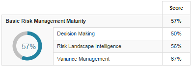 Basic Risk Management Maturity
