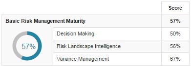 Basic Risk Management Maturity